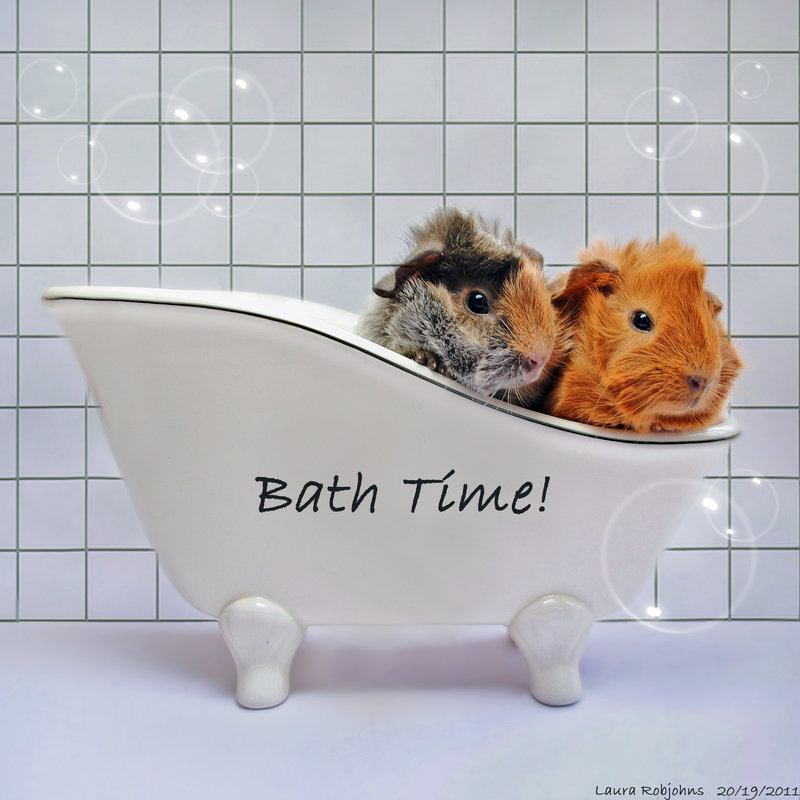 babies_bath_time_by_daydreame-d4ae4k1